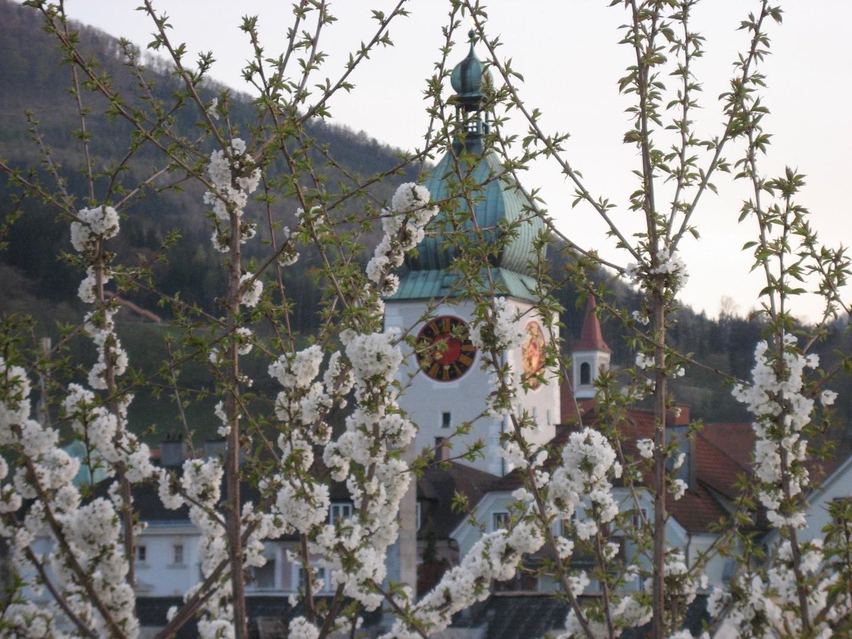 Waidhofen_Waidhofen_Stadt_033.jpg