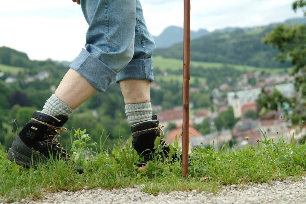 Wandern mit Blick auf Waidhofen.jpg